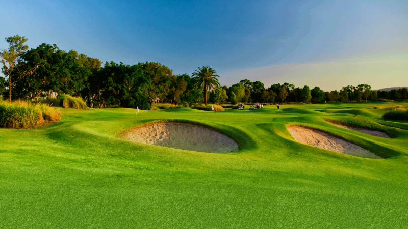 Krugersdorp Golf Course – African Sky Bed and Breakfast